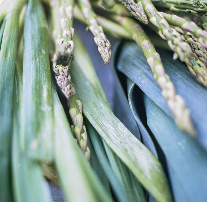"""Foraging Nature Walk: """"A Creative Meditation on Food and Place"""" image"""