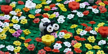 LEGO Club: Seasons tickets