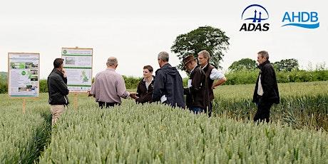 ADAS & AHDB Summer Open Day in Herefordshire tickets
