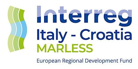 MARLESS Info Day Emilia-Romagna biglietti