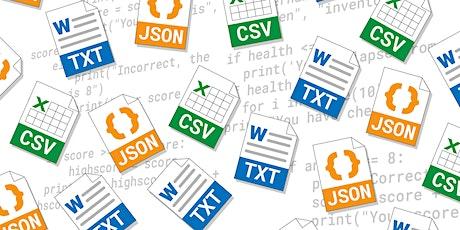 Programming 103: Data - Online course snippet webinar biglietti