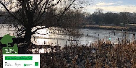 Wildlife & Wellbeing walk- Shibdon Pond  - (Healing Nature) tickets
