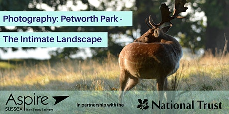 Photography - Petworth Park - The Intimate Landscape tickets