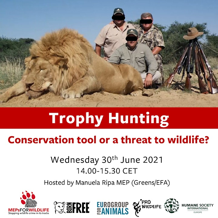 Trophy Hunting: Conservation tool, or a threat to wildlife? image