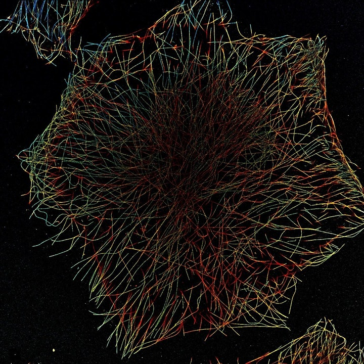 Image pour Dr Ralf Jungmann - Super-resolution microscopy with DNA molecules
