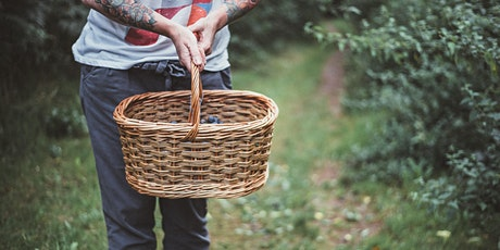 Willow Basketry and Autumnal Foraging Weekend tickets