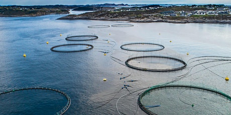 AQUACULTURE : DISEASE PREVENTION AND ANIMAL WELFARE tickets