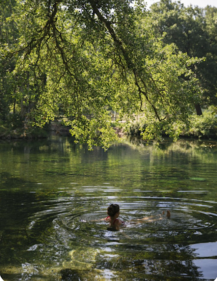 Wet Networks Event - River Water Quality & Wild Swimming image
