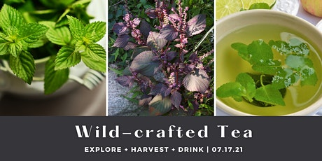 Wild-crafted Tea tickets