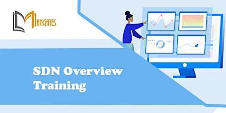 SDN Overview 1 Day Training in San Luis Potosi boletos