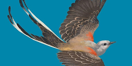 Words of a Feather: Live  Online Poetry Event tickets