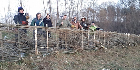 Hedgerows and Hedgelaying in North America tickets