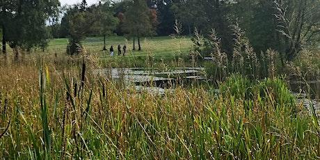 Wild Food Walk Springburn Park tickets