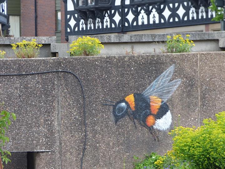 Chester Sustainability Walk image
