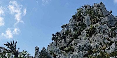 MCCS Okinawa Tours: Kongou Hike, Hedo Point & Okum