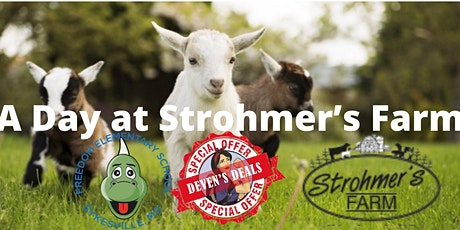 A Day at Strohmer's Farm with Deven's Deals- Sat 6/26  11am-1pm tickets