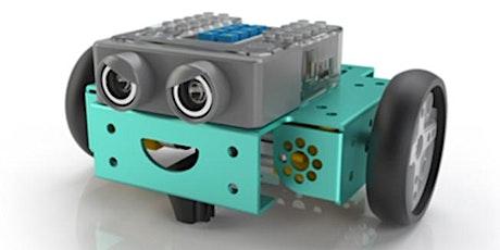 Intro to Flip Robot (age 9 +)with Kingborough Robotics @ Kingston Library tickets