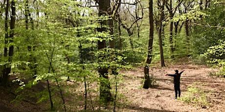Woods Wellbeing - Forest Bathing / Shinrin Yoku tickets