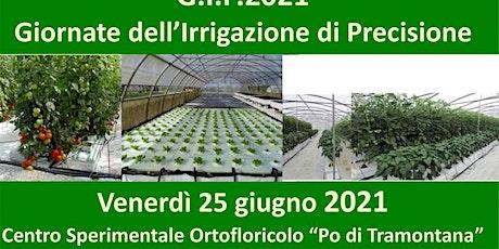 GIP21 Irrigazione precisa e integrata in orticoltura DEMODAY IN PRESENZA biglietti