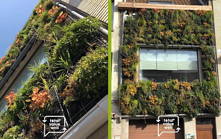 Afbeelding van Met Total Value Wall waterstromen optimaal inzetten in stedelijke omgeving