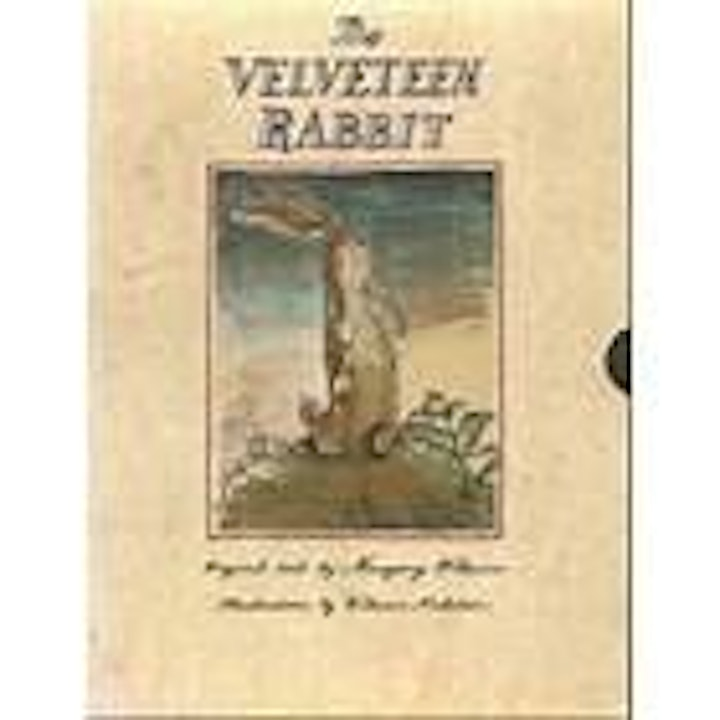 Stories as Medicine: Self Acceptance and The Velveteen Rabbit story image