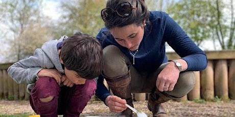 Go Wild after school: Minibeast hunt for families at Foxburrow Farm EFC2511 tickets
