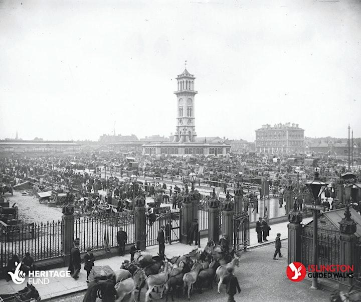 Health & History - a gentle walk around Cally Park image