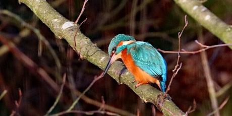 Bird Walk and Talk - Riverside Way, Spa Wood tickets