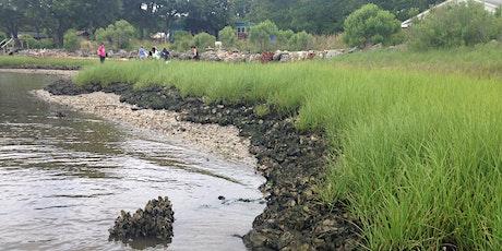 Coastal Erosion Control and Living Shorelines tickets