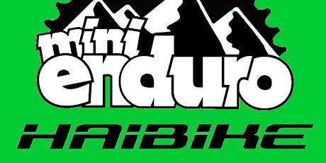 Haibike Mini Enduro Afan 13-06-2021 tickets