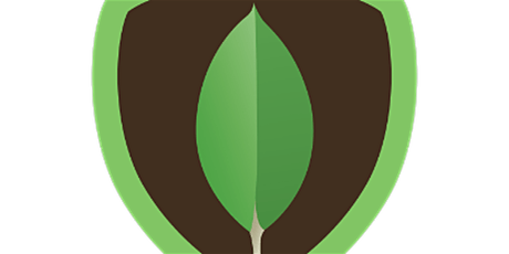 4  Weekends MongoDB Training course for Beginners in Naples tickets