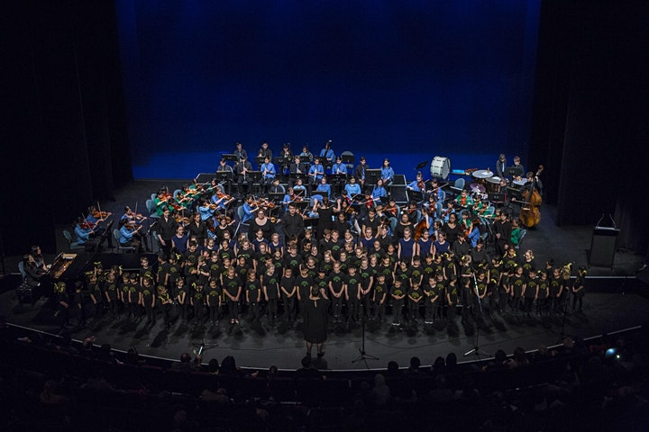 NSYM 19th Annual Showcase Concert image