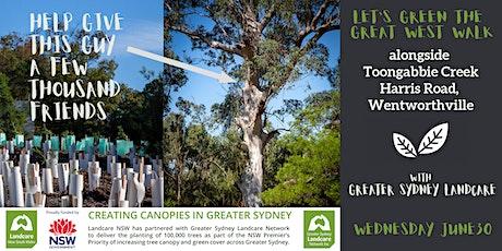 Green the Great West Walk - Toongabbie Creek, Toongabbie near Parramatta tickets