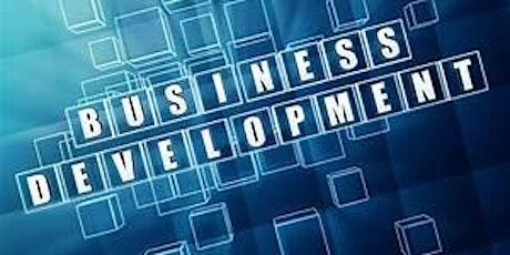 Business Development Information Session Webinar tickets