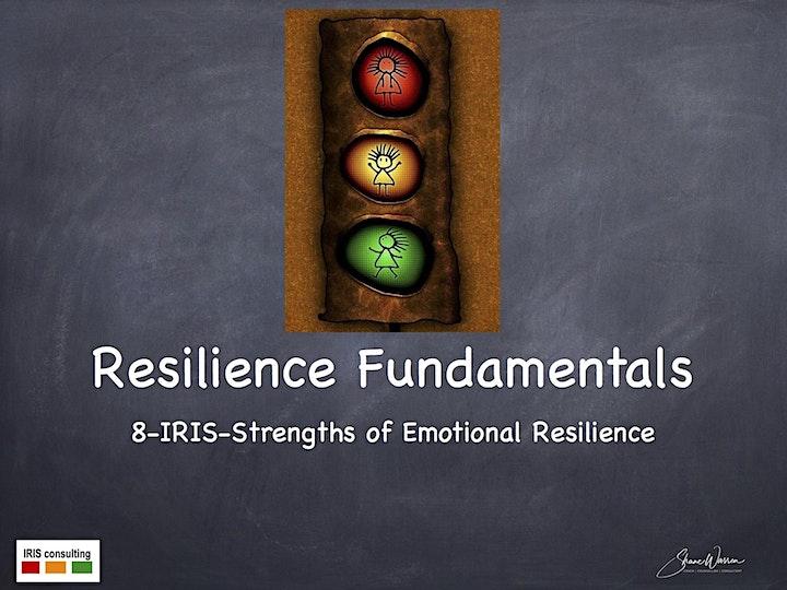 Resilience Fundamentals @ Singapore image