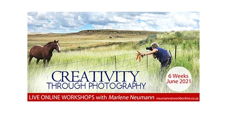 Creativity Through Photography with Marlene Neumann 6 Online Sessions June tickets