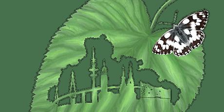 LS444 Lila Heide, graue Schnucken und grüne Eidechsen! Tickets