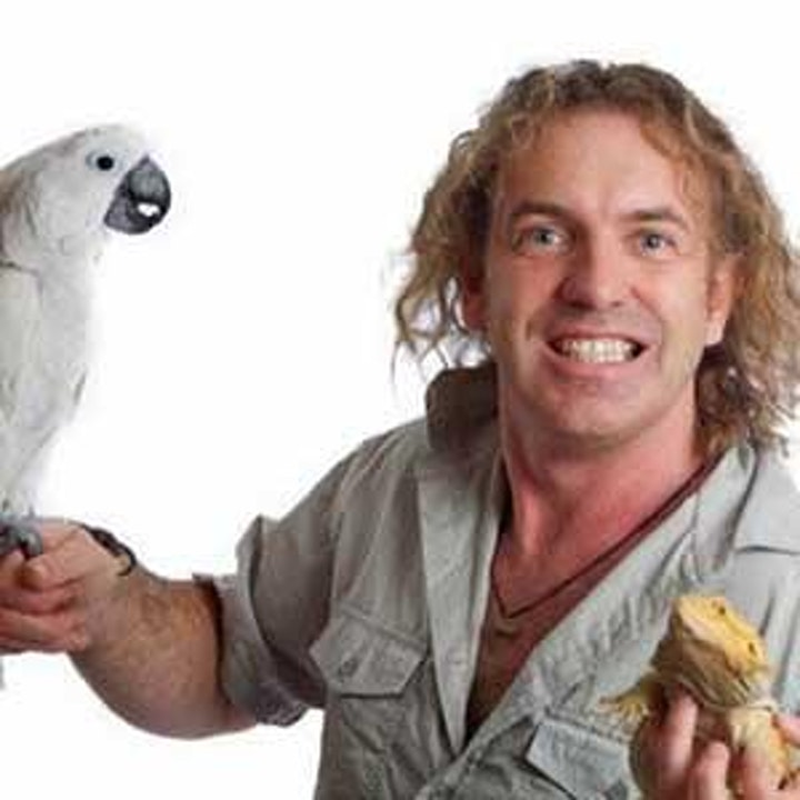 Athy Library Presents: Dave's Jungle for all the family image