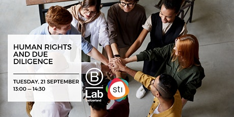 Human Rights and Due Diligence - STI Thematic Event tickets