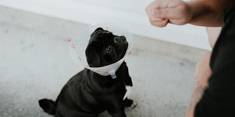 Humane Society: Pet First Aid Tips tickets