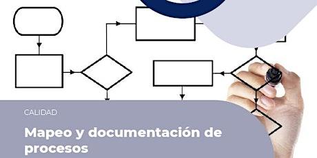 Mapeo y Documentación de Procesos entradas