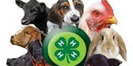 4-H Summer Fun Animal Science Day Camp tickets