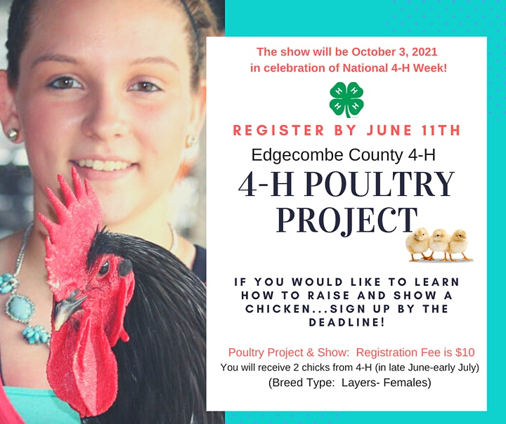4-H Poultry Project & Chicken Show image