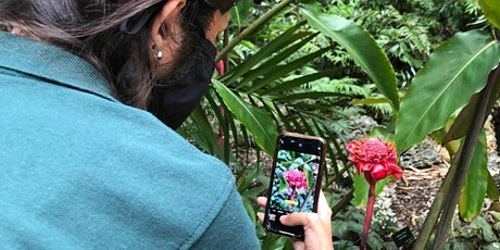 Nature up Close: Phone Photography Workshop for teens! tickets