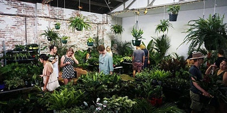 Melbourne - Huge Indoor Plant Warehouse Sale - Low Light Party tickets