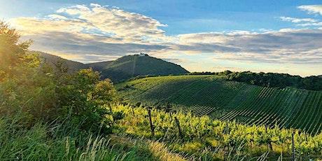 Die erste Weinwanderung bergab 2021 Tickets