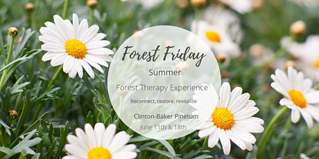 Forest Friday - Summer Woodland Wellbeing tickets