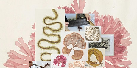 Seaweed Specimens for Art and Science tickets