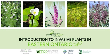 Introduction to Invasive Plants in Eastern Ontario tickets