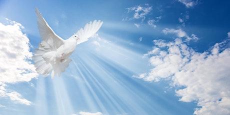 Knute Nelson Hospice Memorial Dove Release- Wadena tickets